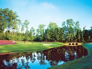 Golden Ocala Golf